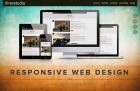 Rex Studio - Michigan Web Design Company