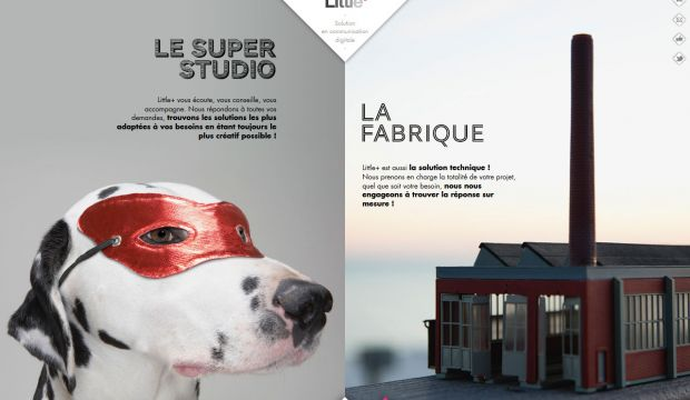Digital communication agency - LittlePlus