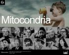 Mitocondria - communication design and technology