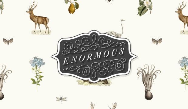 Enormo - A collection of creative side projects