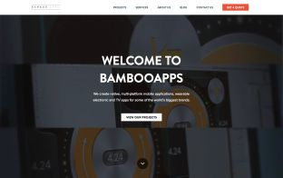 BAMBOOAPPS - a mobile app development agency