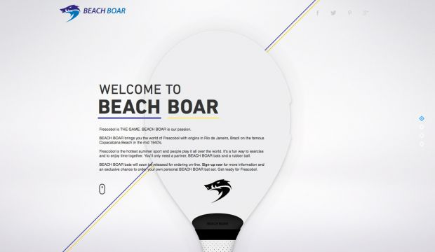 Beach Boar - THE GAME