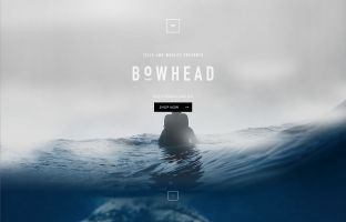 Bowhead - Tails and Whales