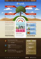 Flourish Web Design - web design search engine optimization and graphic design